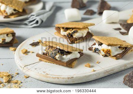 Sweet Homemade Chocolate Smores Dessert