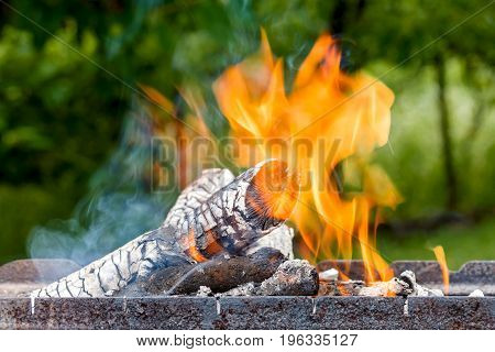 Logs burn with a bright flame. Outdoors.