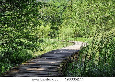 Wooden walkways through the lakes. National Park Plitvice Lakes. Croatia.