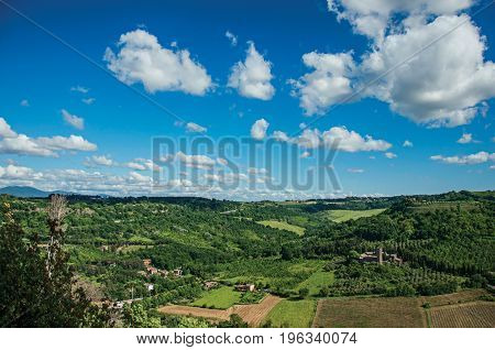 Overview of green hills, vineyards, forests and towered stronghold in a sunny day. In front of the Orvieto town, an ancient, pleasant and well preserved medieval town. Located in Umbria, central Italy