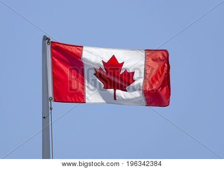 Canadian Flag On Pole Blowing In Wind, Bright Sunny Day