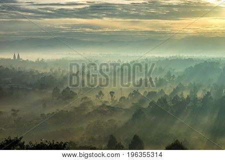 Beautiful sunrise with fog and sunlight through the forest mountain