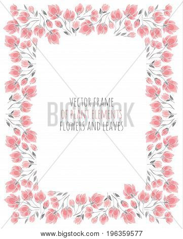 elegant frame of delicate pink sakura cherry blossoms - vector illustration for design