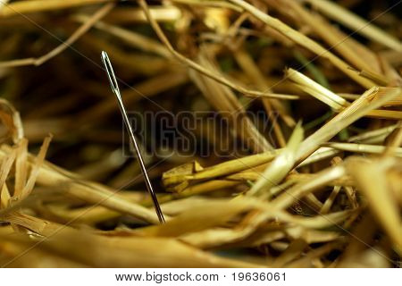 Needle in a bundle of hay.  Needle in a hay stack. poster