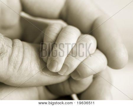 new-born baby fingers (b/w version)