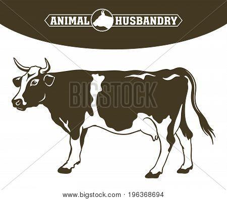 breeding cow. grazing cattle. animal husbandry. livestock. vector illustration on a white background