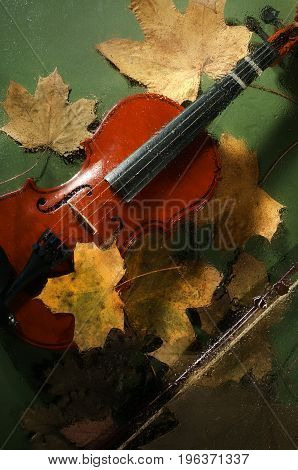 Violin and autumn leaves on the green background across a water drops on glass.