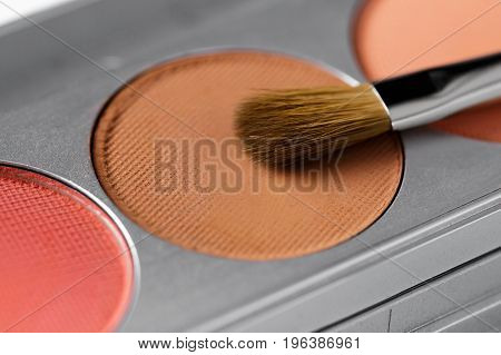 professional cosmetics. Palette of brown and terracotta eye shadow and makeup brush