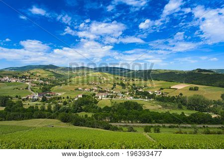 Vineyards Of Ternand And Letra Villages In Beaujolais