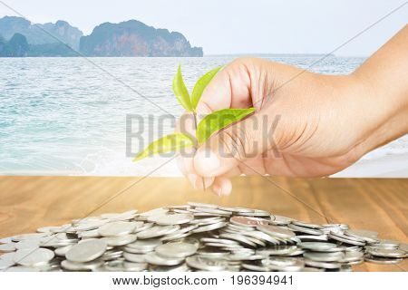 Close-Up Of Female Hand Pick Up The Leaf On The Coin With Mountain And Sea Background Business Finance And Money Concept Business Investment Growth Concept
