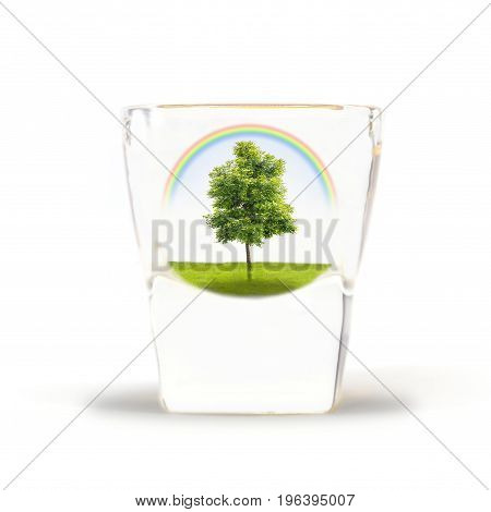 green tree in green field with rainbow in the glass shot Nature Conscious Concept abstract background keep nature in glass.