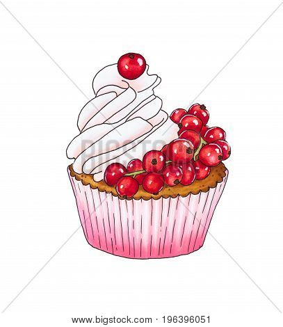 Cupcake With Fresh Red Currant