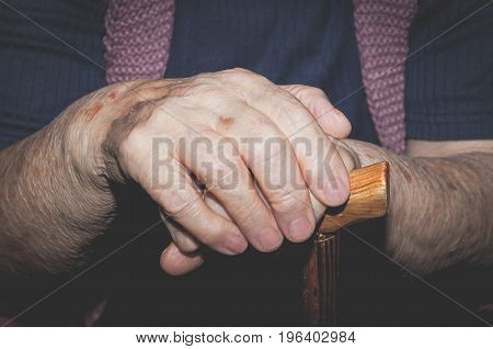 Close up of hands of old lady with wooden walking stick.