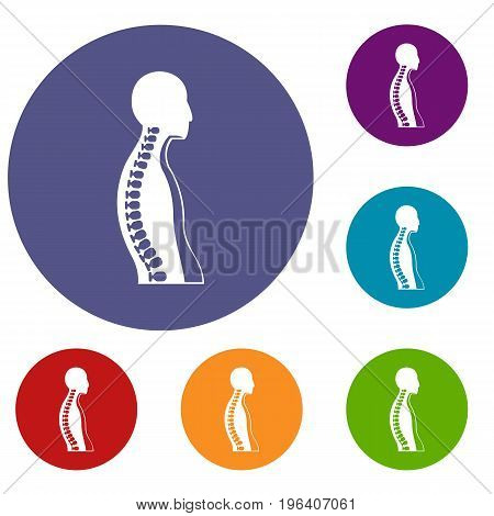 Human spine icons set in flat circle red, blue and green color for web