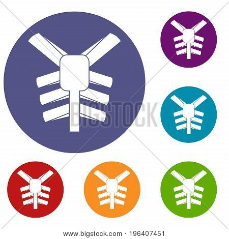 Human thorax icons set in flat circle red, blue and green color for web
