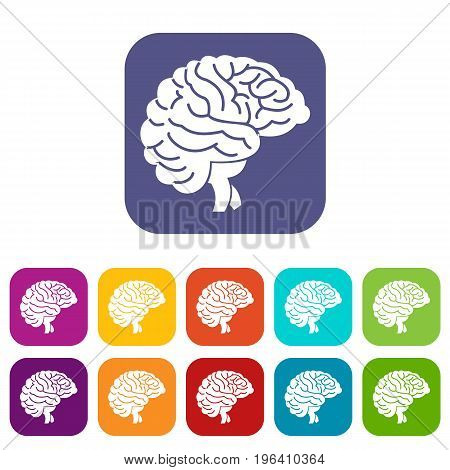 Brain icons set vector illustration in flat style in colors red, blue, green, and other