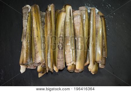 Bunch of razor clams in their shell. Isolated over black slate