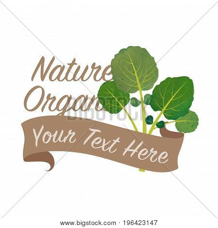 Colorful Watercolor Texture Vector Nature Organic Vegetable Banner Watercress