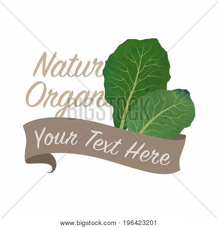 Colorful Watercolor Texture Vector Nature Organic Vegetable Banner Collards