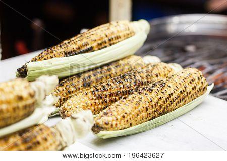 Grilled Corncob en brochette in a close up shot.