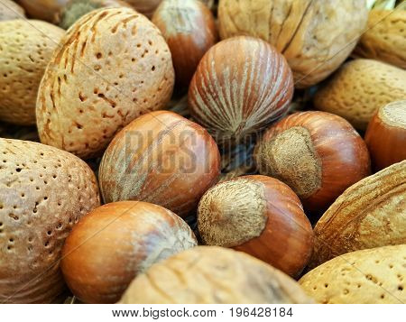 Mix of different types nuts close up