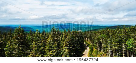 Distant landscape in a big Canadian forest during a beautiful bright day!