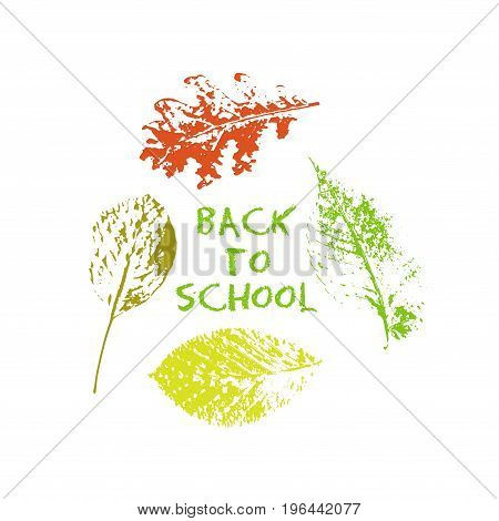 Back to school green chalk lettering typography with oak, marple, linden tree leaves colorful stamp texture. Vector illustration for cards, banners, print.