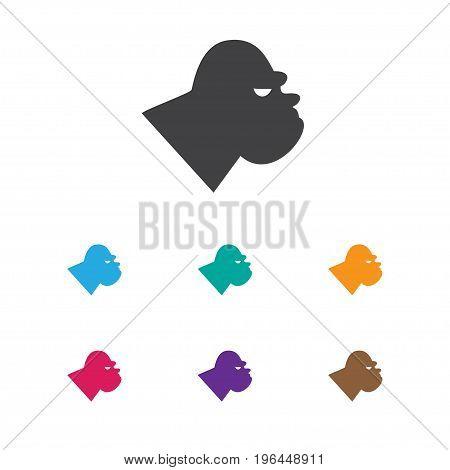 Vector Illustration Of Zoology Symbol On Gorilla Icon