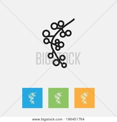 Vector Illustration Of Cooking Symbol On Cranberry Outline