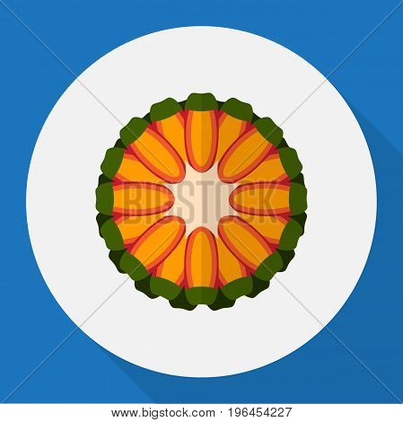 Vector Illustration Of Fruits Symbol On Tropical Fruit Flat Icon