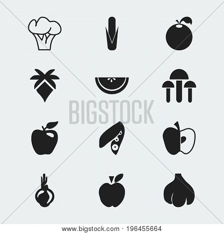 Set Of 12 Editable Dessert Icons. Includes Symbols Such As Jonagold, Cantaloupe, Maize And More