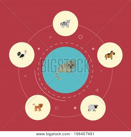 Flat Icons Kitty, Pony, Rooster And Other Vector Elements