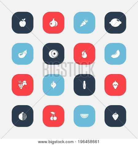 Set Of 16 Editable Berry Icons. Includes Symbols Such As Garnet, Turnip, Melon Slice And More