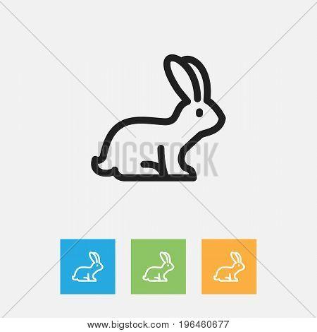 Vector Illustration Of Animal Symbol On Bunny Outline
