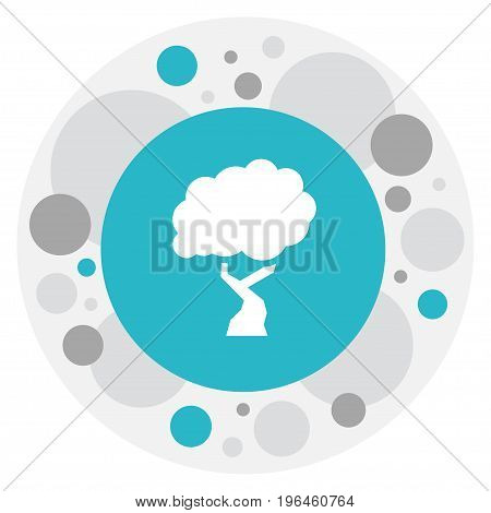 Vector Illustration Of Climate Symbol On Wood Icon