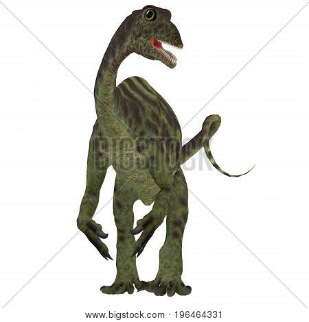 Anchisaurus Jurassic Dinosaur 3d illustration - Anchisaurus was a omnivorous prosauropod dinosaur that lived in the Jurassic Periods of North America Europe and Africa.