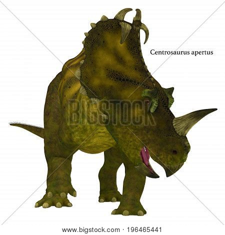 Centrosaurus Dinosaur Neck Frills with Font 3d illustration - Centrosaurus is a herbivorous Ceratopsian dinosaur that lived in Canada in the Cretaceous Period.