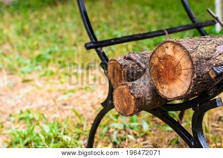 The broken trunks of trees on the wood are folded under barbecue
