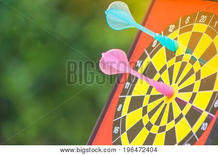 Business Marketing and Strategy Concept : Close up pink dart hit target on dart board with green bush background in autumn filter effect. (Soft Focus)