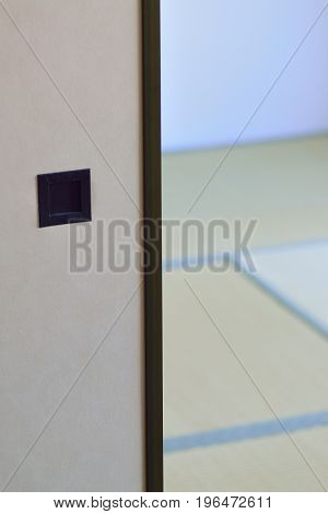 Japanese tradition house interiors with plywood partition & Tatami floor mats in vertical frame