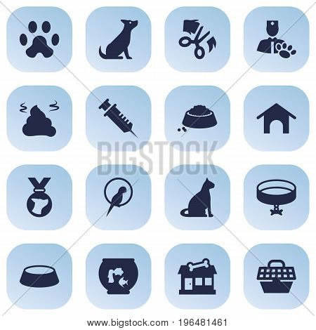 Set Of 16 Pets Icons Set. Collection Of Veterinarian, Bird, Store And Other Elements.