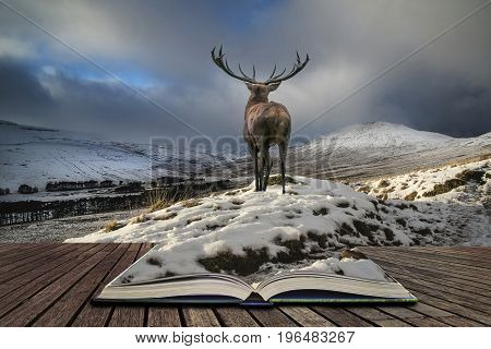 Beautiful Red Deer Stag In Snow Covered Mountain Range Festive Seasonal Winter Landscape Concept Com