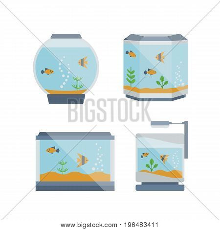 Cartoon vector home glass aquarium illustration with water, plants. Isolated aquarium life clipart in flat style.