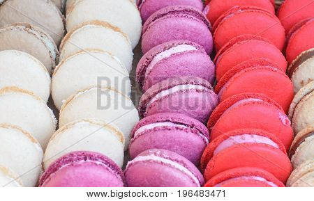 French Sweet Dessert, Colorful Macaroons Closeup, Tasty Texture