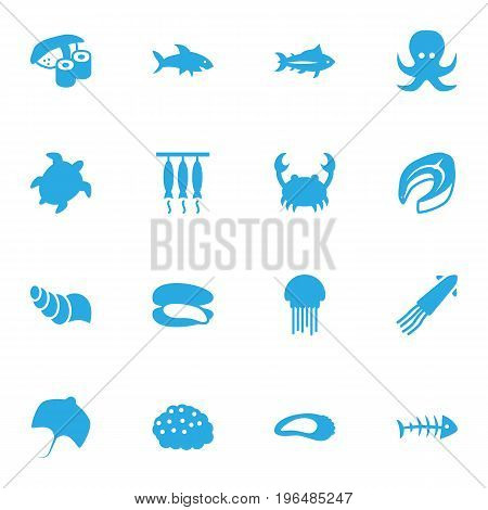 Set Of 16 Food Icons Set. Collection Of Tunny, Tortoise, Remains And Other Elements.