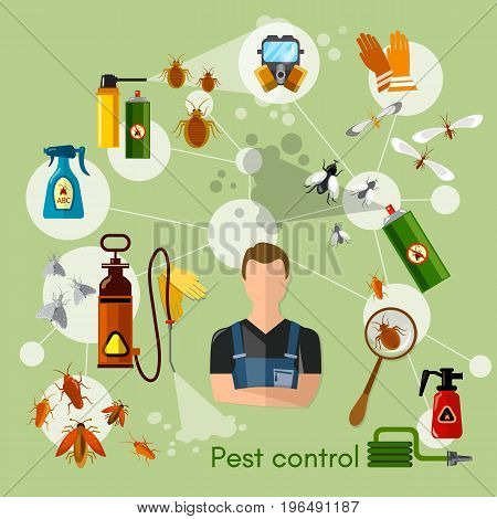 Pest control services infographics detecting exterminating insects illustration