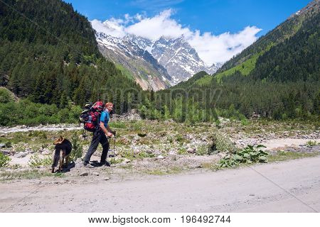 Man Traveler With Big Dog Walks On The Road In A Mountain Gorge