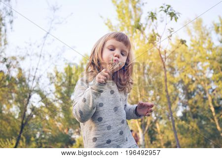 Funny Little Girl, With Serious Face, Is Blowing On A Dandelions