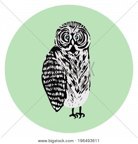 Vector freak tawny owl illustration cartoon character cute confused black and white bird symbol for your design label logotype poster