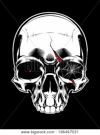 Angry skull with scar  and spiderweb on black background